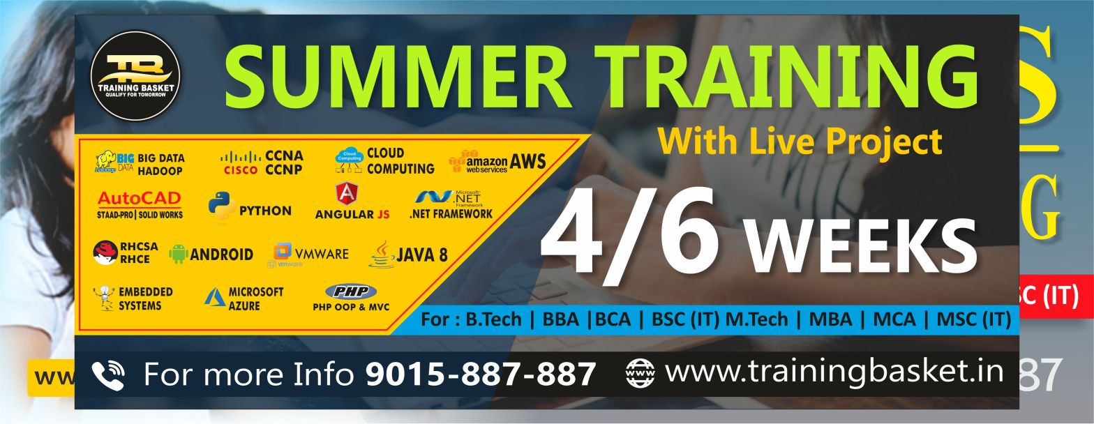 Summer training institute in noida